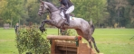 Irish Sport Horses shine at FEI World Breeding Championships for Young Eventing Horses in Le Lion