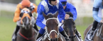 Winx Breaks World Record Thanks To Waller's Management