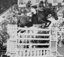 Vicky Roycroft's Thoroughbred Grand Prix jumper Apache xx.