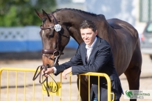 Cathal Daniels and the Dr Sarah Hughes-owned Shannondale Percy Photo: Irish Eventing Times