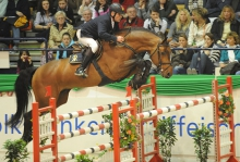Chacco Blue tops the 2017 Rolex WBFSH Showjumping Sire Rankings