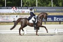 Finnish Junior Tuisku Lamberg Gets Ride on Grand Prix Horse Duendecillo P
