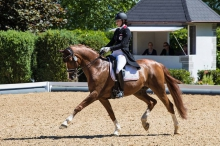 Equestricons Lagerfeld K