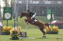 For Felicila retires from Showjumping and returns to Elevage de Will Photos: Sportfot