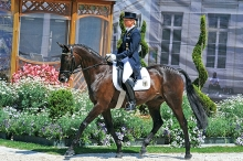 Butts Abraxxas 99.8% TB, Rider: Ingrid Klimke