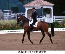 Sad passing of British Olympic dressage horse Enfant