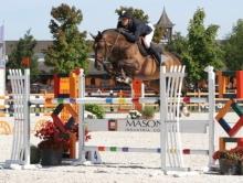 Forlap, International horse for Gregory Wathelet, Passes Away