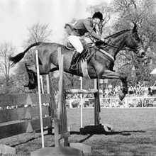 Kilkenny another Eventing Star from the past Olympic/World Championships