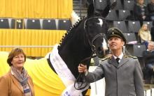 Rotspon Hanoverian Stallion of the Year 2017